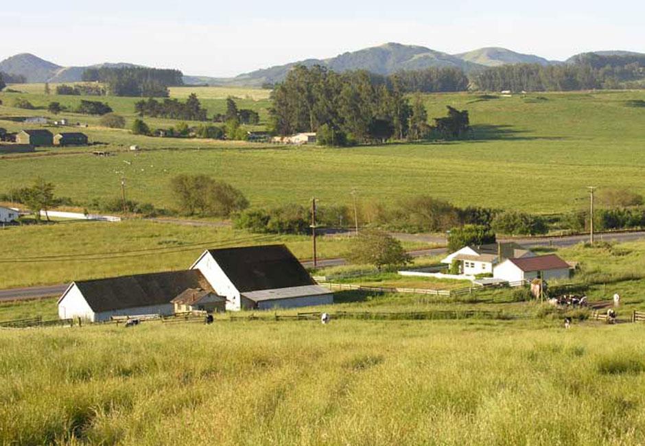 Camozzi Ranch