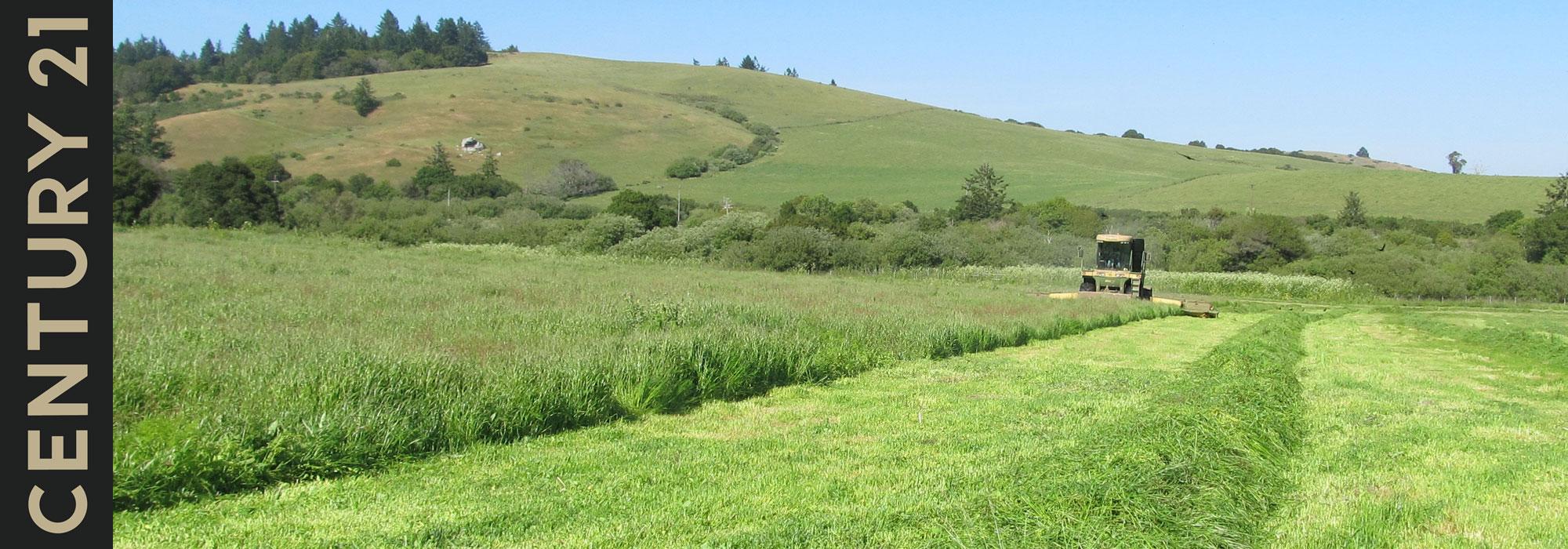 Bodega Ranch Century 21 Bundesen